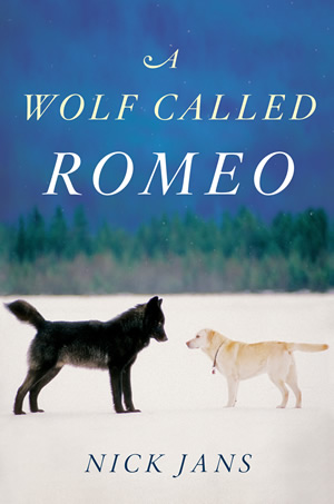A WOLF CALLED ROMEO Cover