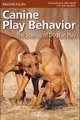 Canine Play Behavior