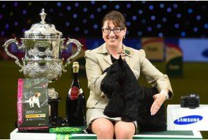 Knopa, the Scottish Terrier, with handler Rebecca Cross Photo: Joe Giddens/PA Wire