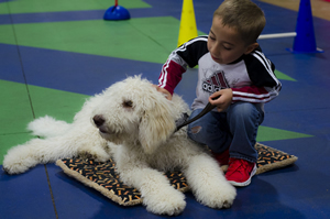 It's time for some hands-on bonding between Luke and Snoopy during a class break at Pawsabilities.