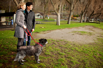 Kate and Matt Herz enjoy a walk in the park with Jackson, their beloved 10-year-old border collie mix