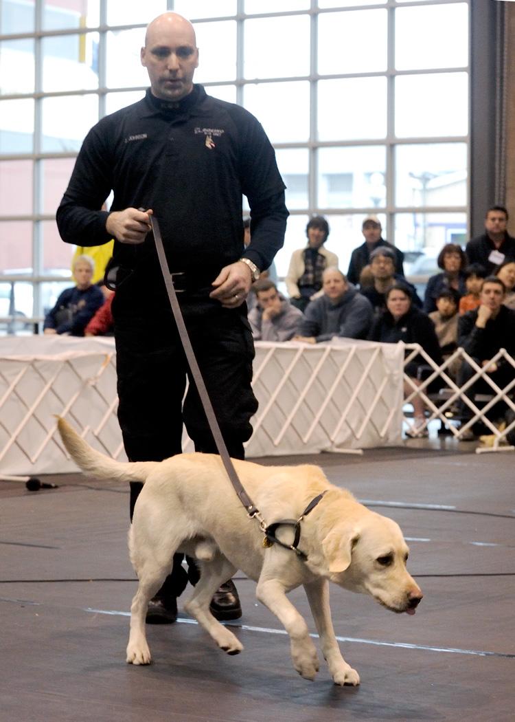 Skc Dog Show  Schedule