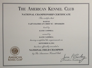 Weeks after Chief's triumph, Campbell received this National Championship Certificate from the AKC.