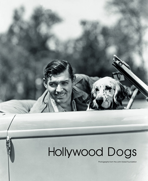 HollywoodDogsCover