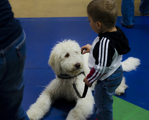 Luke Gonzalez, 9, puts Snoopy, his Labradoodle service dog, on a down stay during a class at Pawsabilities in Fife.