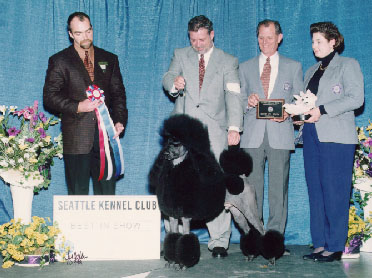Twice our SKC Best in Show Winner 1999 & 2000<br> The Standard Poodle Ch. Aleph's Blue Skies Outrageous<br>handled by Tim Brazier for Patricia Moulthrop